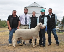 Pictured with the $3600 top priced White Suffolk ram at the Gemini sale are purchaser Anthony Ferguson, Anna Villa stud, Weetulta, SA, auctioneer Miles Pfitzner (GTSM) and Gemini's Chloe, Emily and Craig Mitchell, Werneth.
